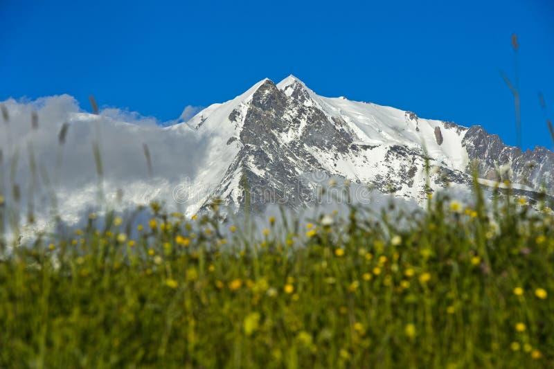 勃朗峰断层块的积雪的峰顶 库存图片