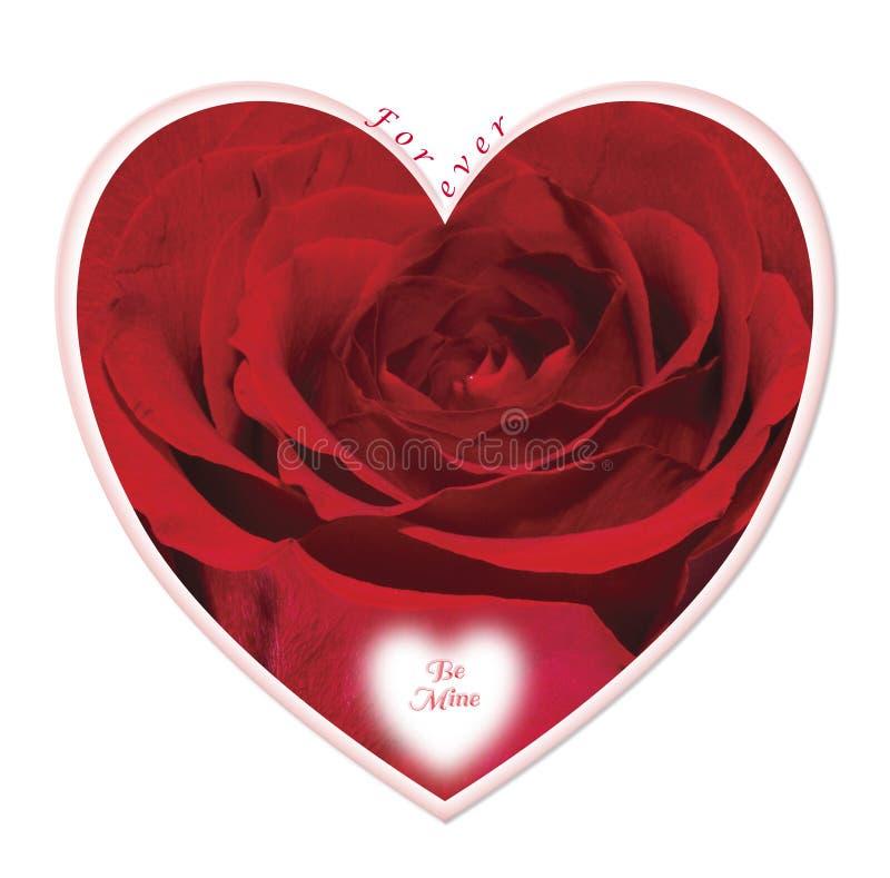 包含一朵红色玫瑰的华伦泰心脏 图库摄影