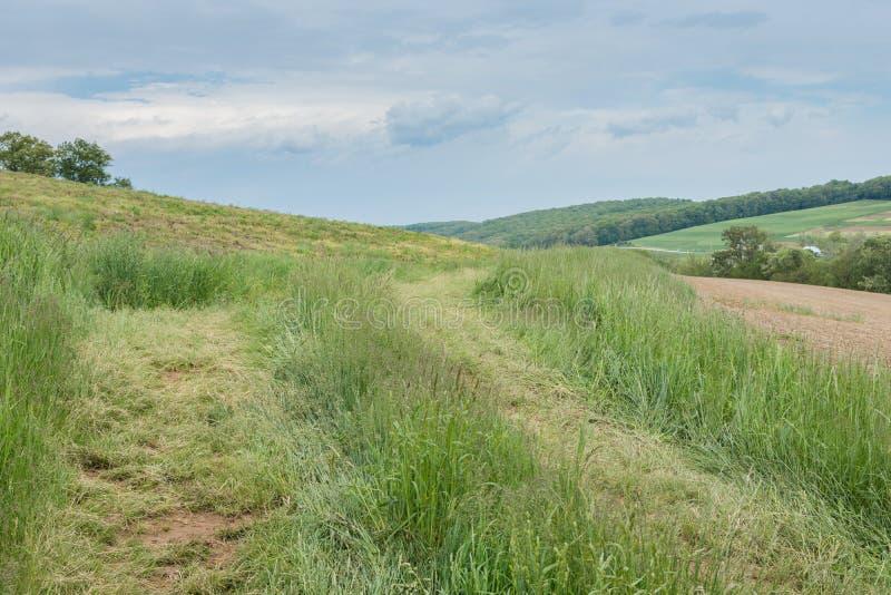 包围威廉卡因公园的农田在约克县, Pennsylva 库存图片