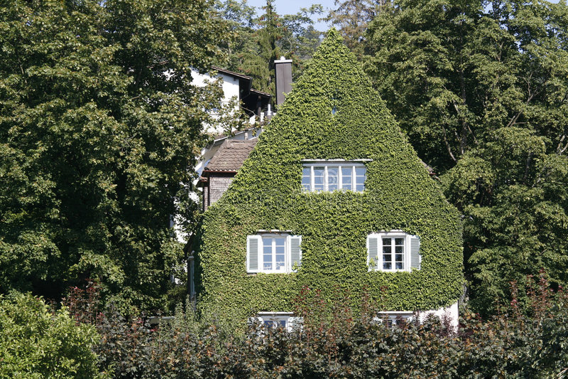 包括的房子叶子 免版税库存照片