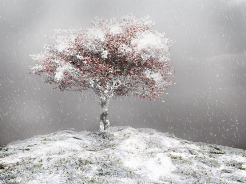 包括的雪结构树 库存例证