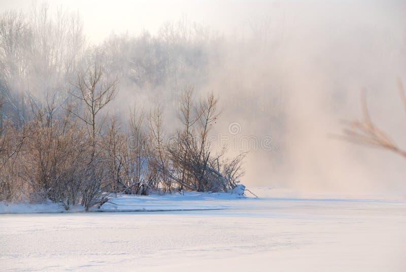 包括的雾冻结的河 免版税库存图片