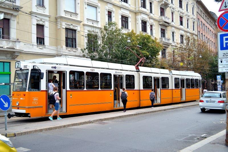 匈牙利布达佩斯城橙色电车 库存图片