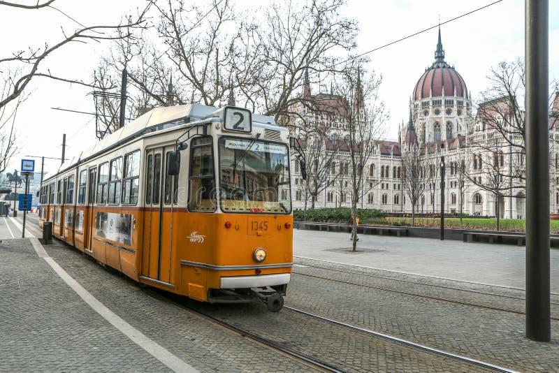 匈牙利议会在有电车的布达佩斯 图库摄影