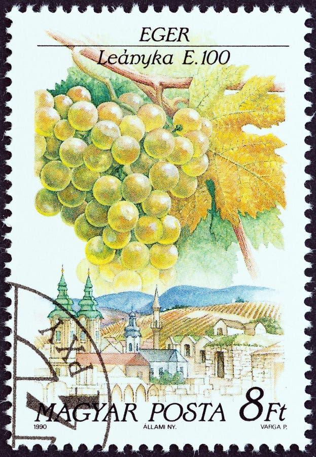 匈牙利-大约1990年:在匈牙利展示打印的邮票Leanyka,埃格尔,大约1990年 免版税库存图片