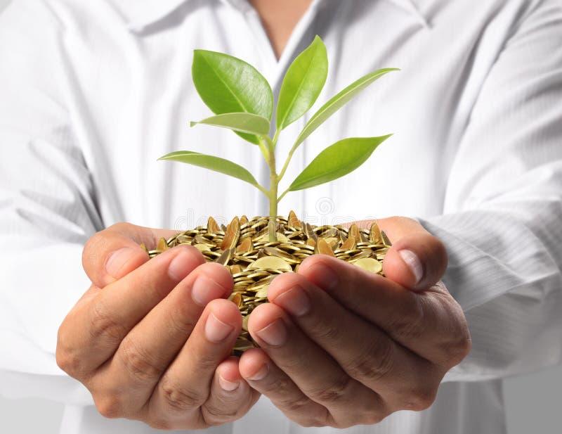 绿化事务的投资 免版税库存图片