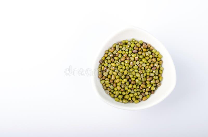 绿化在碗的绿豆 库存图片