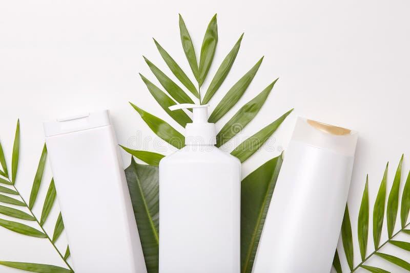 化妆品水平的射击反对绿叶或叶子的 egg toilet 您的化妆用品 套美容品 图库摄影
