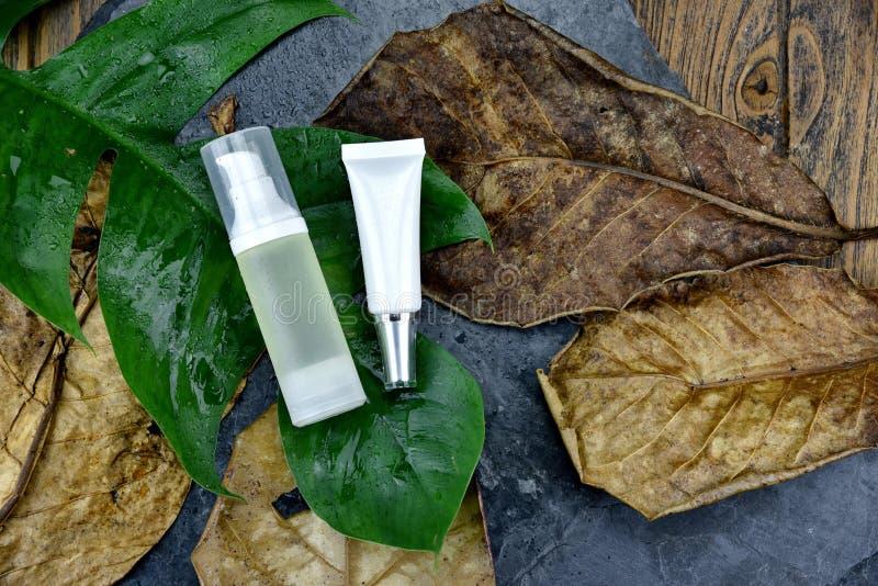 化妆用品包装为烙记的大模型,护肤的自然有机绿色成份的美容品 免版税库存图片