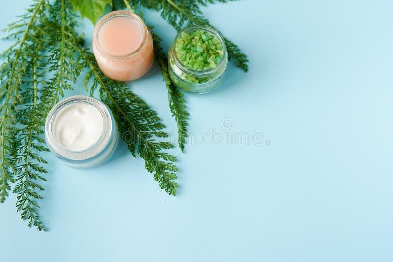 化妆用品成份的图象在蓝色背景的与拷贝空间 skincare题材 自然有机产品 免版税库存照片
