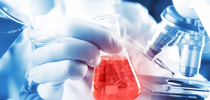 化学家倾吐在beger玻璃的学生男孩蓝色液体对与红色液体的锥形烧瓶化学在生物化学的实验 免版税图库摄影