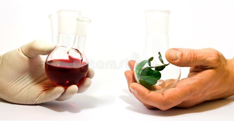 化学自然综合 免版税库存图片