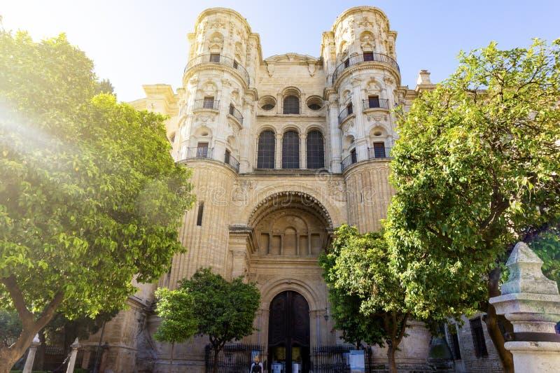 化身卡特德拉尔de la EncarnaciA ³ n的大教堂在马拉加,西班牙在庭院里在阳光下 免版税库存照片