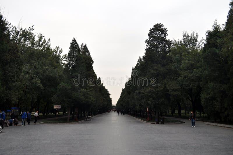 北京天坛公园风景 库存照片