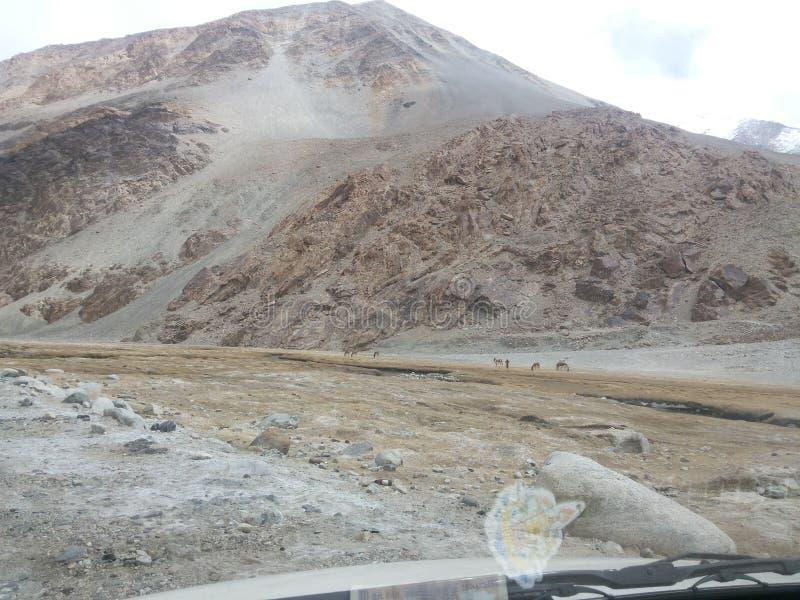 北印度的平静的山 免版税库存图片