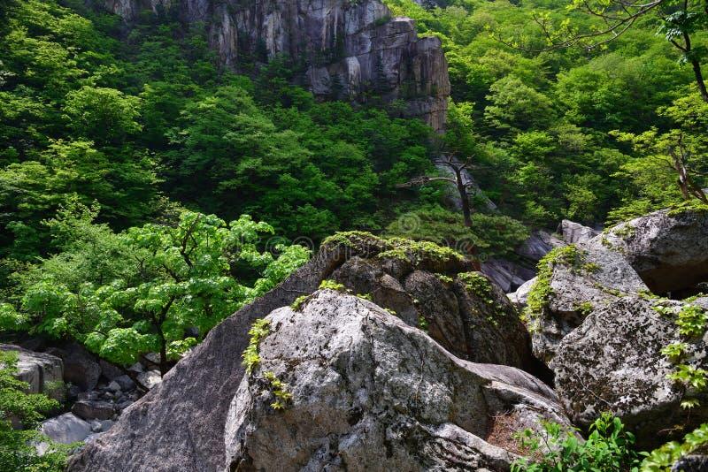 北朝鲜 金刚石山 Mt Kumgang 库存图片