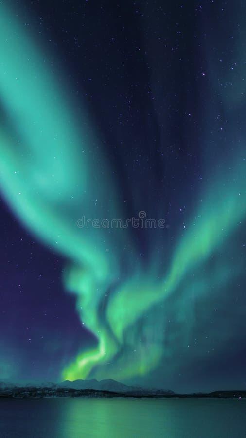 北极光的夜,极光Borealis 免版税库存照片
