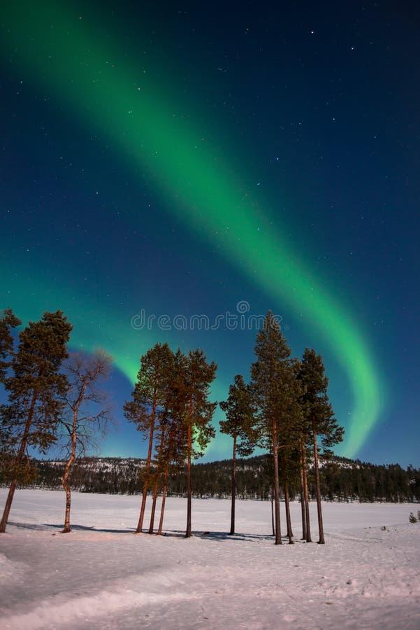 北极光,极光Borealis在拉普兰芬兰 免版税库存图片