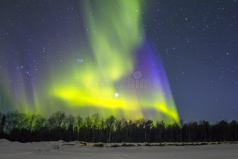 北极光(极光borealis)在snowscape。 免版税库存照片