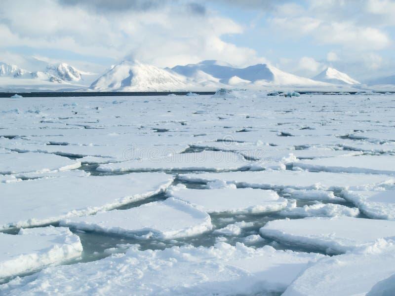 北极冰海洋装箱海运表面 免版税库存照片