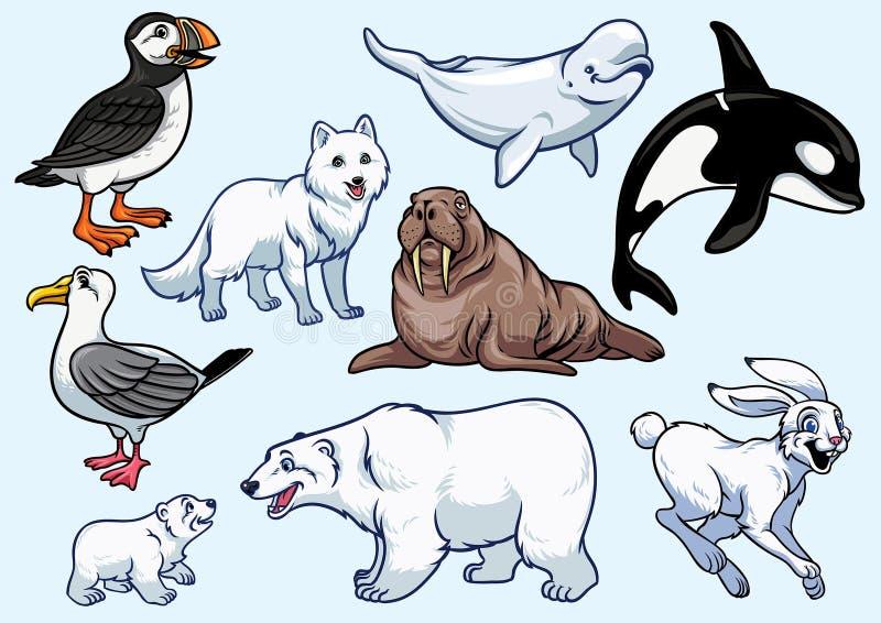 北极动物集合 向量例证