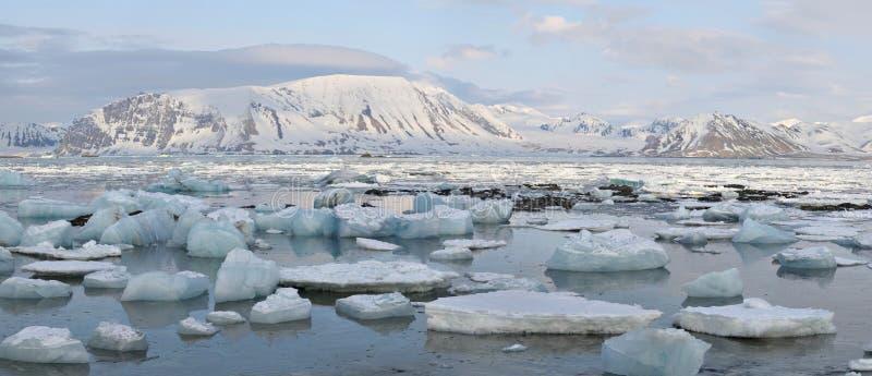 北极横向全景 免版税库存图片