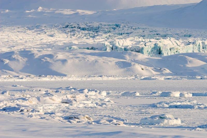北极海湾冻结的冰川横向 免版税图库摄影