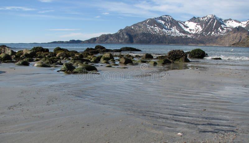 北极海滩 免版税库存照片