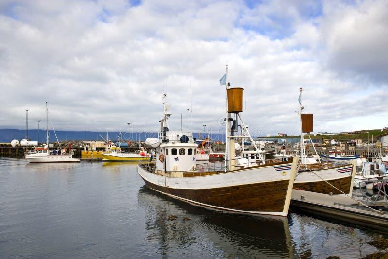 北极港口注意的鲸鱼 库存图片