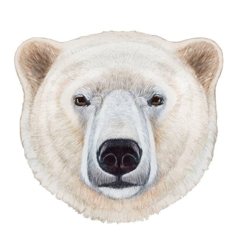 北极熊画象香蕉跑吃猴子游戏下载图片
