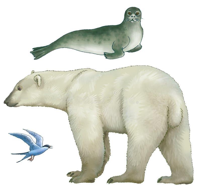 北极的动物 向量例证