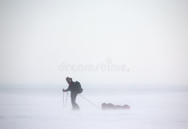 北极远征 图库摄影