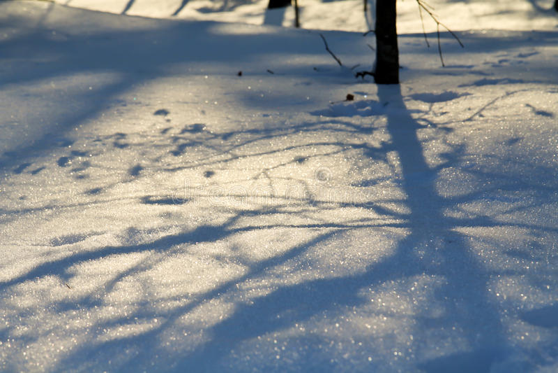 北欧冬天 库存照片