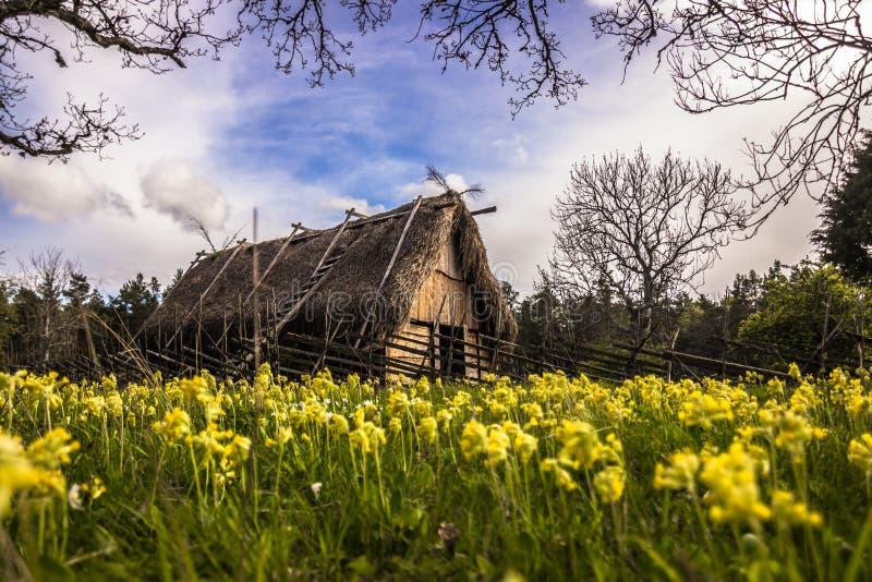 北欧海盗房子在哥得兰岛,瑞典 库存图片