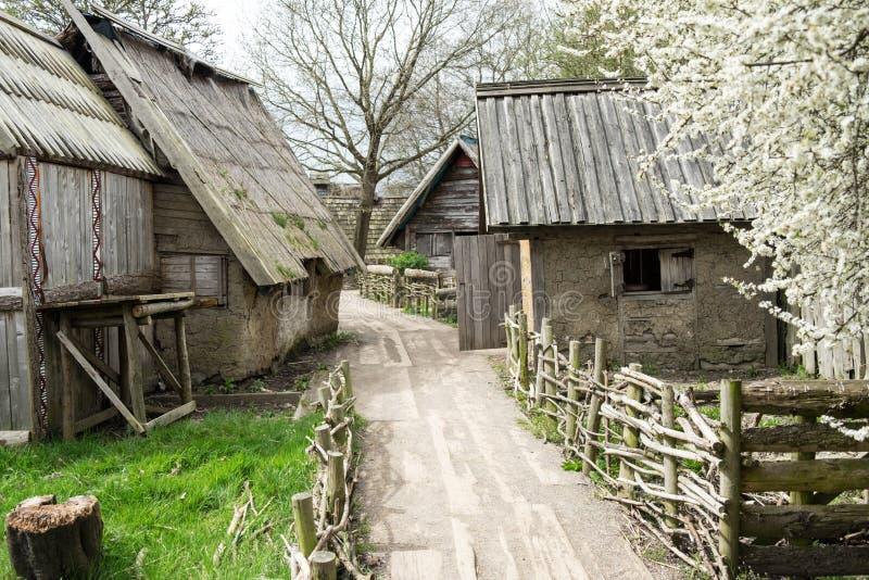 北欧海盗村庄 免版税图库摄影