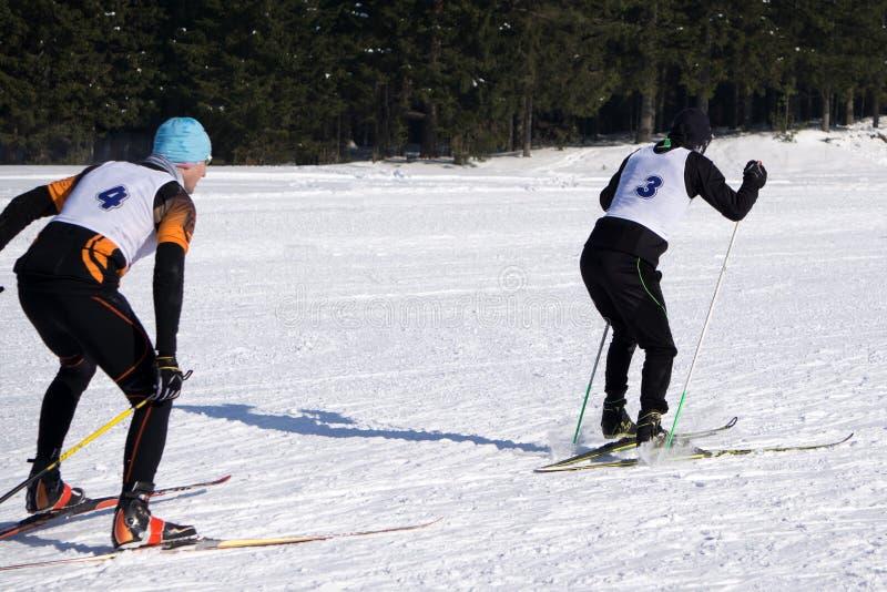 北欧滑雪,寒假在阿尔卑斯,山的越野滑雪者 免版税库存图片