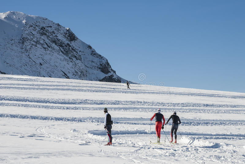 北欧滑雪 免版税库存图片