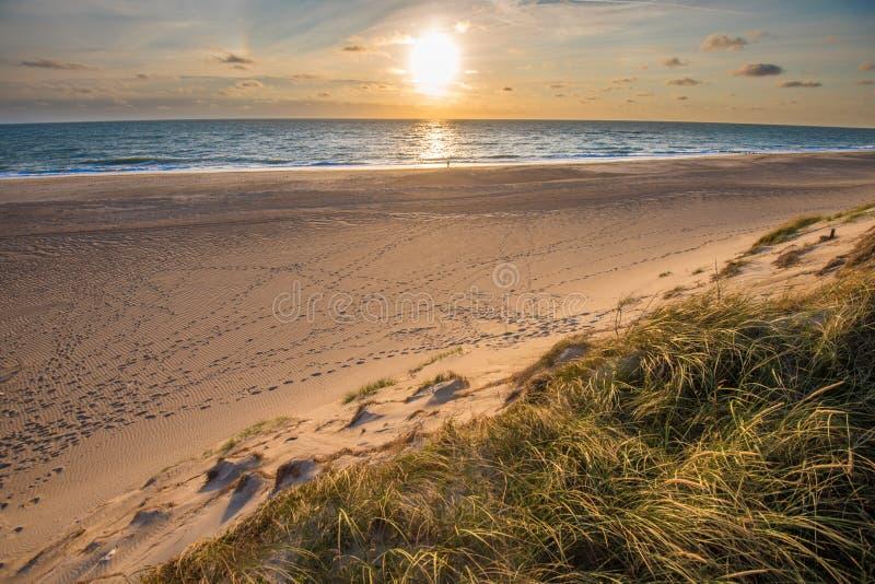 北海海滩,日德兰海岸在丹麦 库存图片