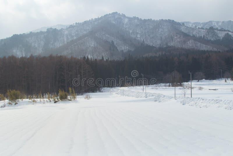 北海道冬天季节 免版税库存照片