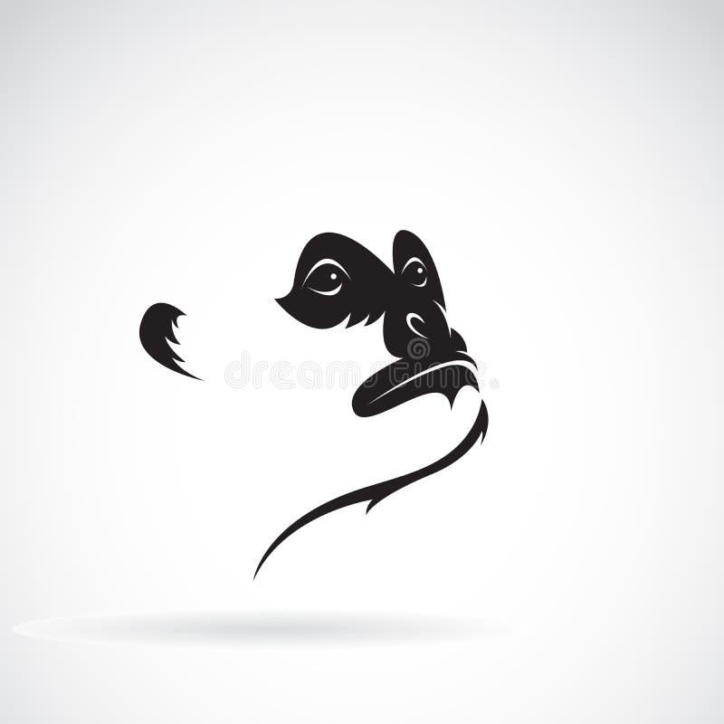 北白的cheeked长臂猿面孔设计传染媒介  徽标 库存例证
