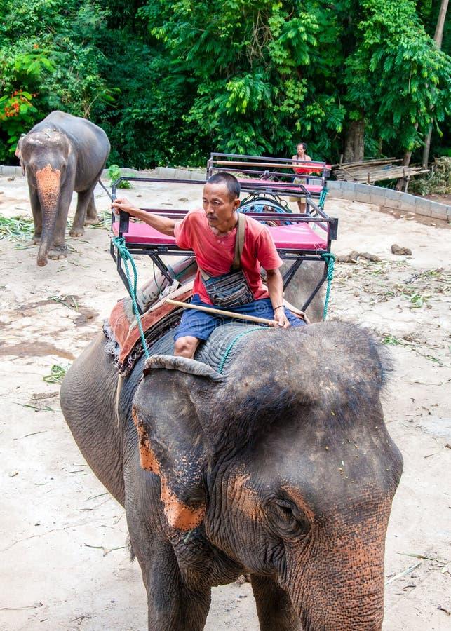 北碧,泰国- 2014年5月23日:的Mahout和等待他的大象开始与游人的游览2014年5月23日在Kanchan 免版税图库摄影