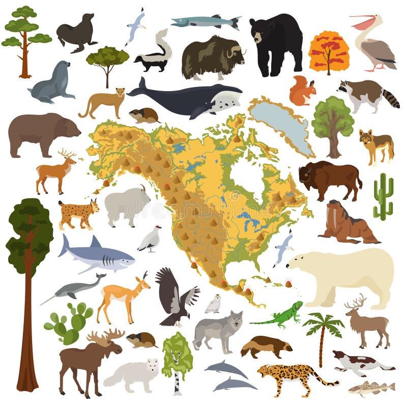 北美植物群和动物区系映射,平的元素 动物,鸟 皇族释放例证