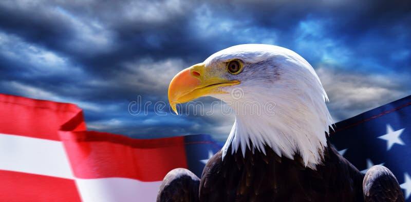北美洲白头鹰Haliaeetus leucocephalus和美国旗子与黑暗的暴风云在背景 免版税库存图片