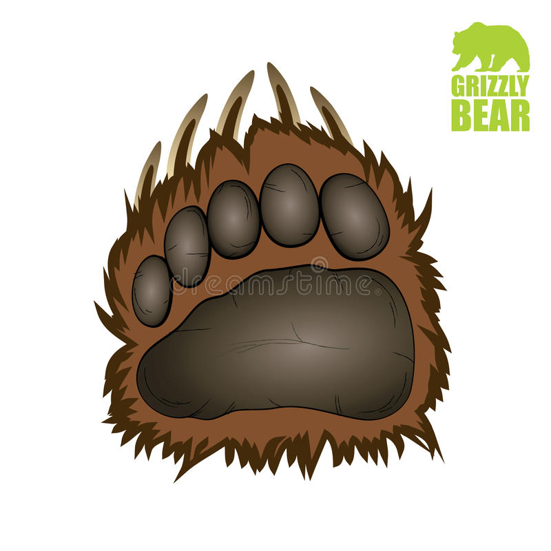 北美灰熊爪子 向量例证