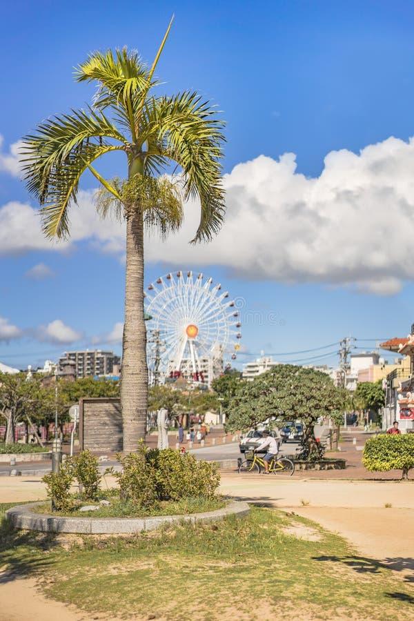 北谷町市的日落海滩棕榈树和美滨狂欢节公园在美国村庄弗累斯大转轮 免版税库存图片
