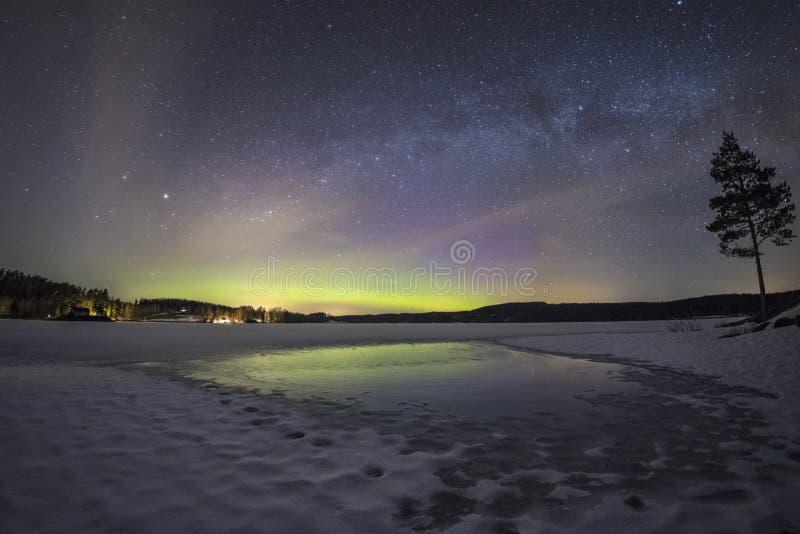 北轻的极光borealis在瑞典 图库摄影