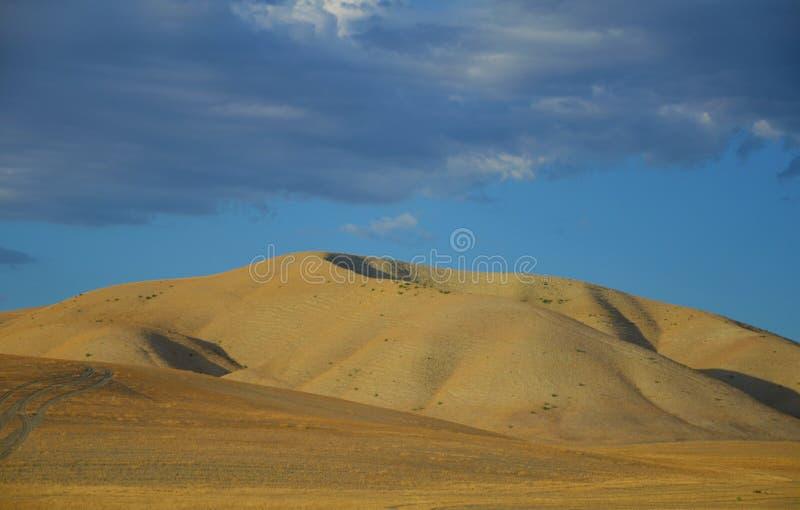 北部加利福尼亚山与天空蔚蓝的晚夏 免版税库存图片