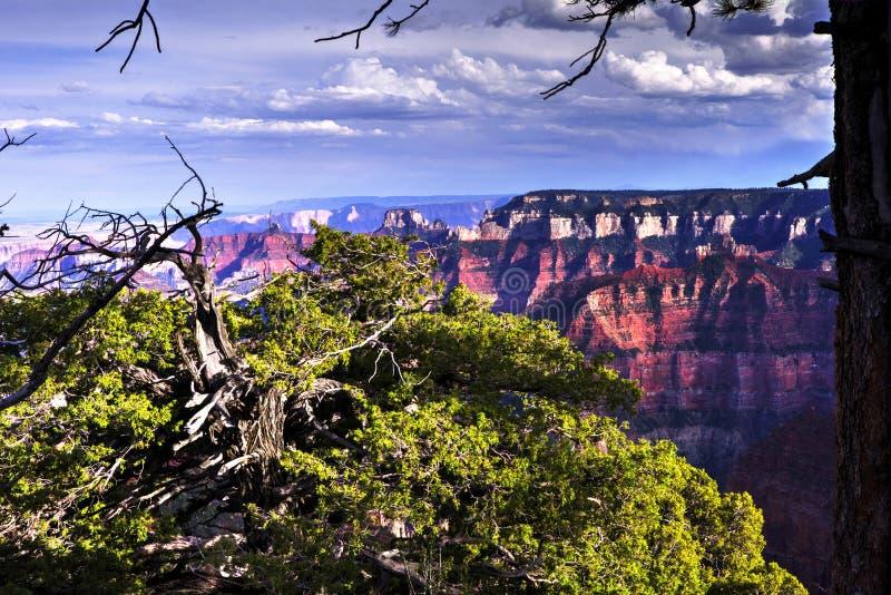 北部外缘大峡谷,亚利桑那,美国 免版税库存图片