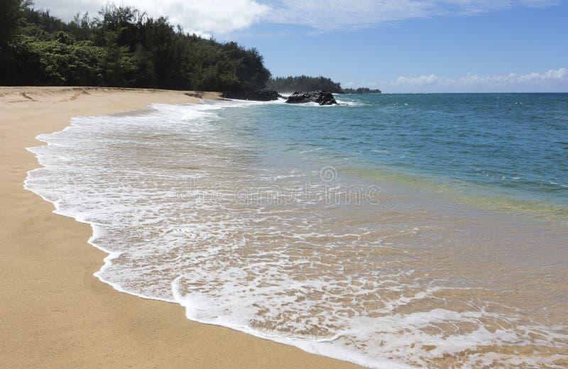 北部岸,考艾岛,夏威夷 库存图片