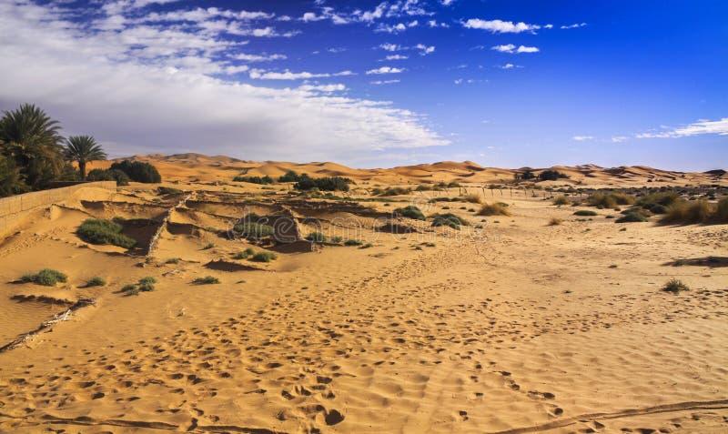 北部撒哈拉大沙漠遥远的沙漠风景 库存图片